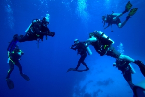 small groups of diver in Lykia world diving centre