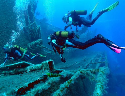 The PADI Specialty courses